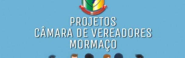 PROJETO DE LEI LEGISLATIVO Nº008/2019 de 05 de novembro de 2019.