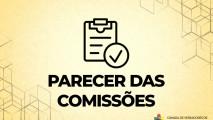 PARECER DAS COMISSÕES DO PROJETO DE LEI Nº029/2021
